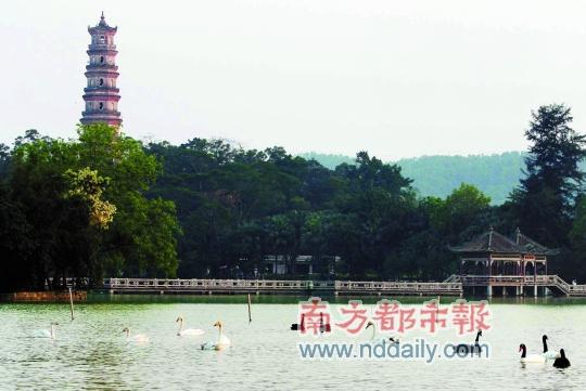 """西湖位列""""惠州十大名胜""""首位"""